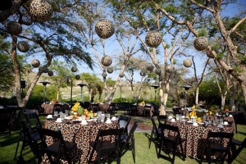 חתונה בעיצוב ספארי אפריקה