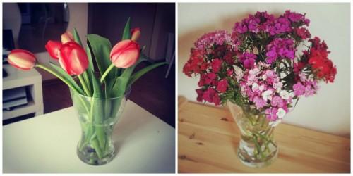 השראה פרחים