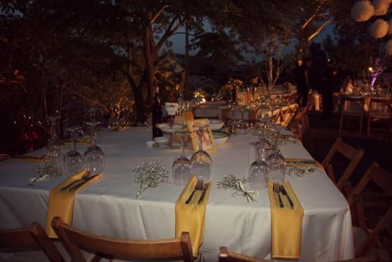 חתונה בגינה הביתית
