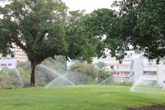 פארק וולפסון ממטרות