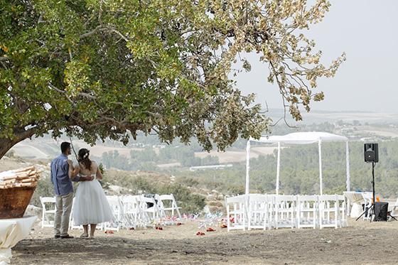 חתונת פיקניק